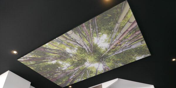 https://www.rambaud-decors.fr/wp-content/uploads/2017/01/realisations_decoration_rambauddecors-600x300.jpg